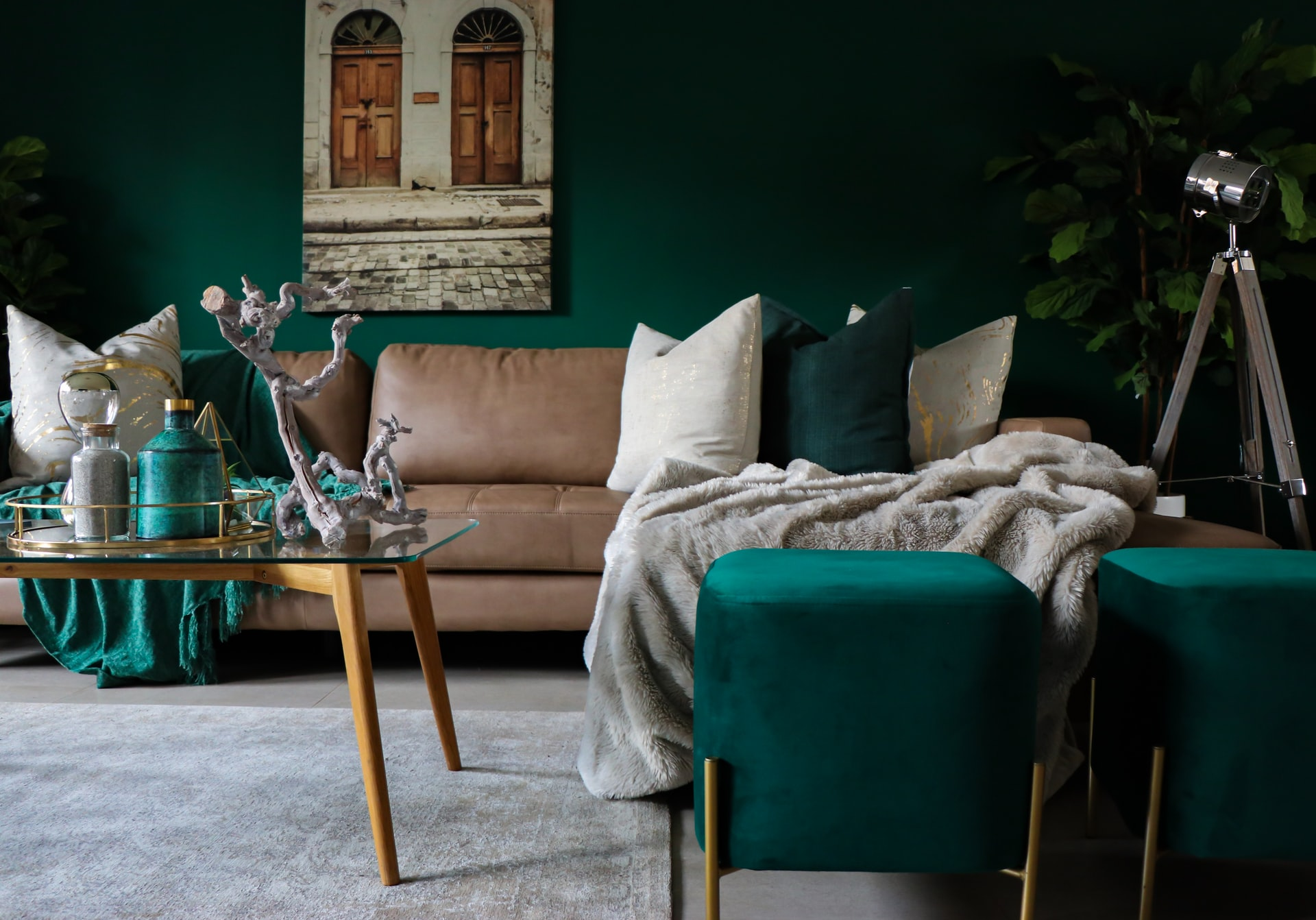 living room throw cushion